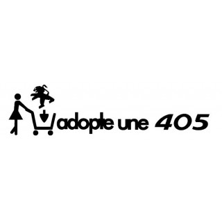 ADOPTE UNE 405