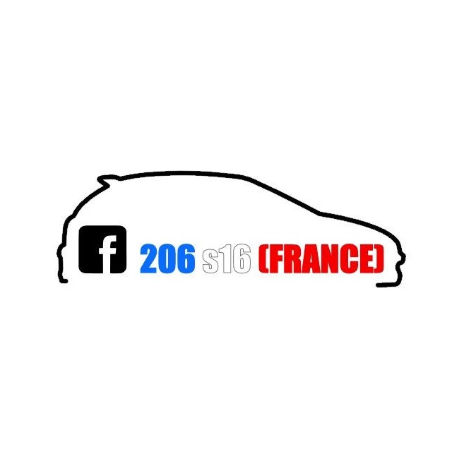 Stickers 206 S16 France Tri color 2