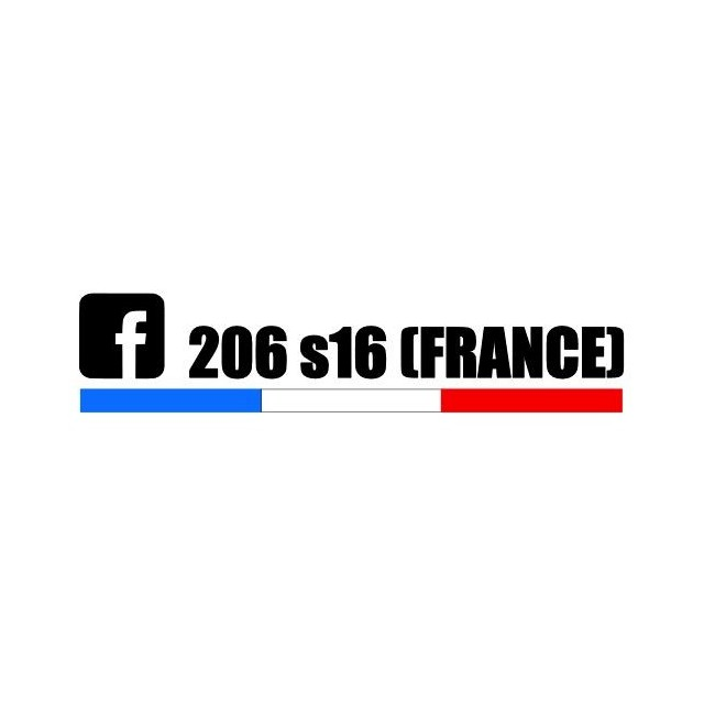 Stickers 206 S16 France Tri color 3