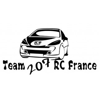Stickers TEAM 207 RC FRANCE