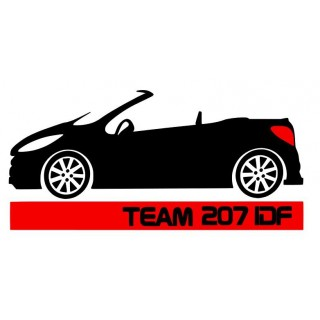 Stickers  TEAM 207 CC IDF