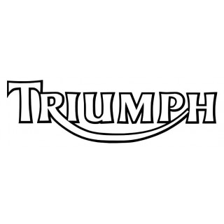 Stickers TRIUMPH 2