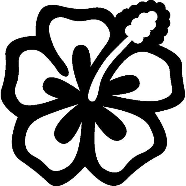 Dessin Fleur Hibiscus Soffco